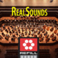 Thumbnail RealSounds Reason ReFill - Ensemble Double Bass