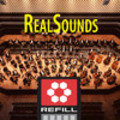 Thumbnail RealSounds Reason ReFill - Clarinet